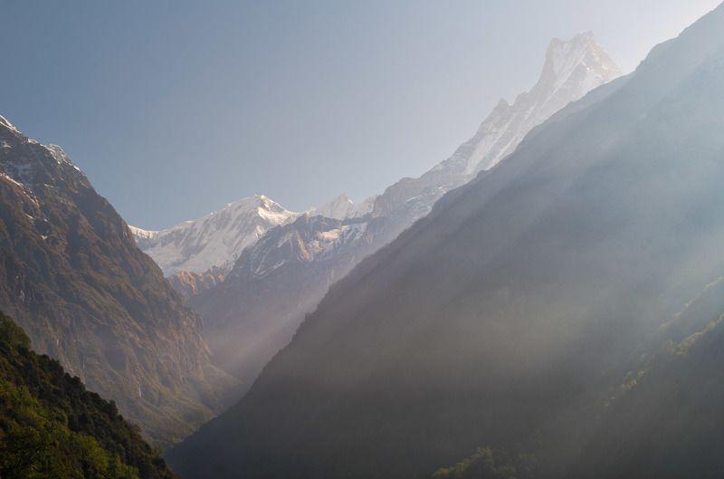 nepal, himalayas, macchapucchre, annapurna, mountains Утренний Мачапуччре, он же -  Фиштэйл.photo preview