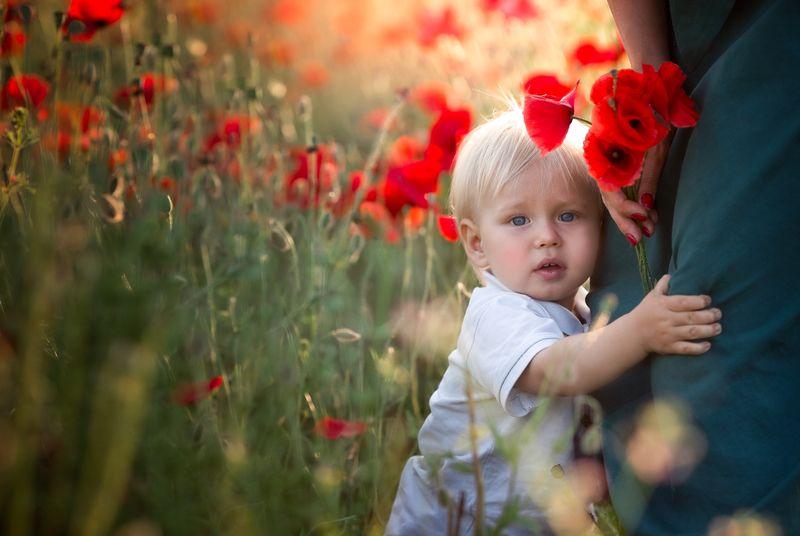 маковое поле, детская фотография, прага, мальчик, мальчик с мамой, красный цвет, леняя фотография В макахphoto preview