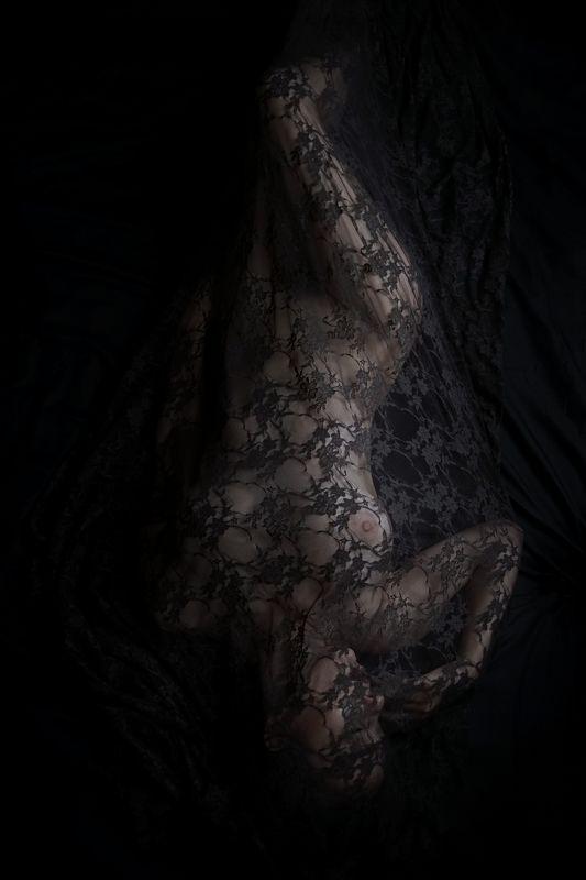 black, lace, fine-art, nude, veil photo preview