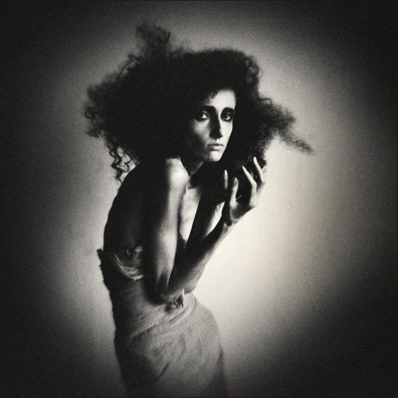 портрет чёрной хризантЭммы...photo preview
