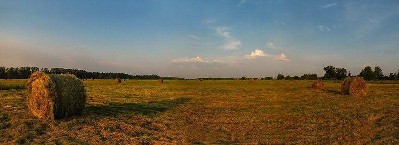 лето, природа, пейзаж, панорама Знойное лето...photo preview