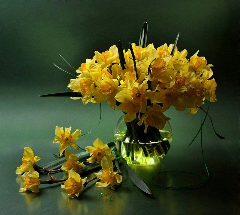 flower, flowers, funtry, narcissus, olga kovtun, photo, still life, букет, ваза, нарциссы, натюрморт, фотонатюрморт, цветы Нарциссыphoto preview