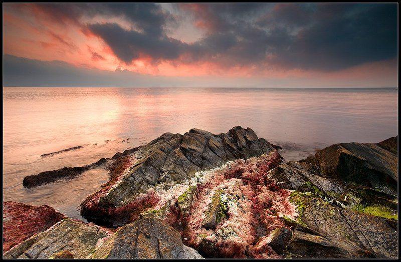 Melancholic seaphoto preview