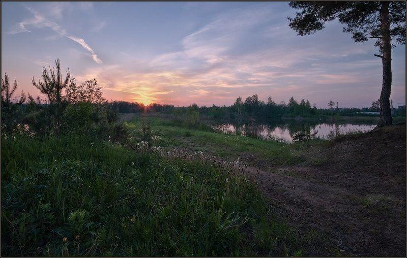 рассвет, озеро, лес photo preview