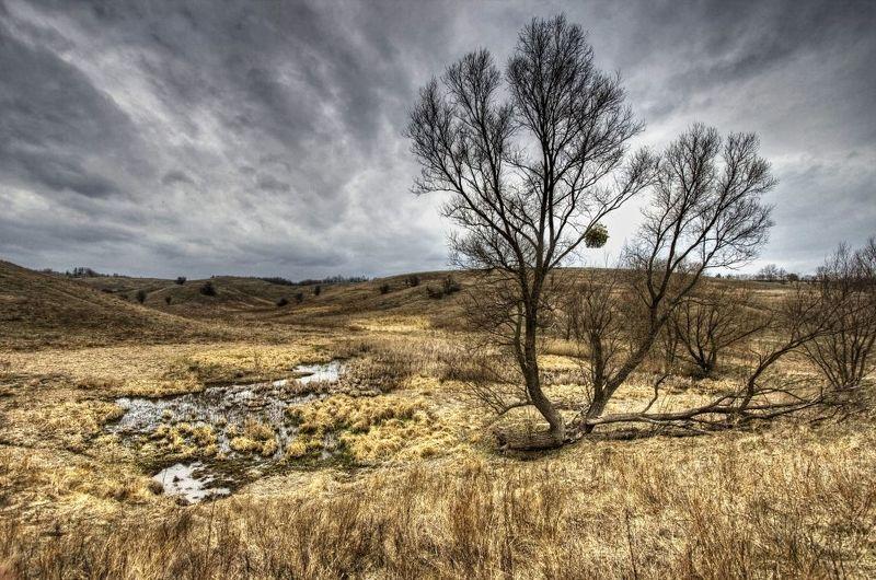 пейзаж, панорама, природа, canon400d photo preview