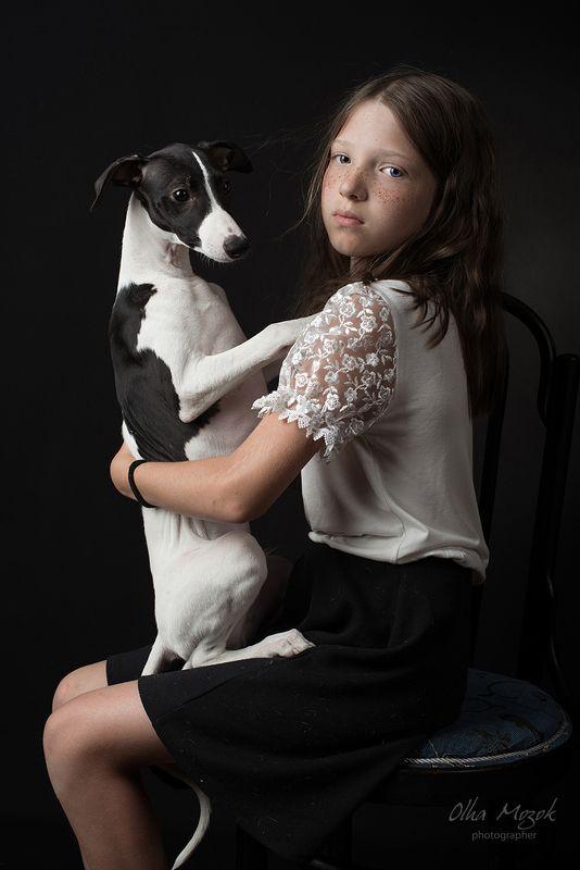 портрет, девочка, собака, уиппет, portrait, girl ,dog ,dogs, whippet, puppy photo preview