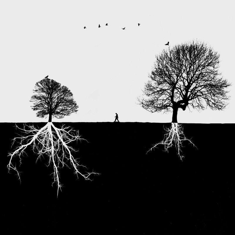 #35photo #surrealart#photoshop#ps_fantasy#art_minimal #bnw_dream #photography#minimalism#conceptual#fineart #instagram#ps_dreams#bnwminimalismmag#art_digital #ir_photographer#ir_aks#minimal#canon#blackandwhite#bnw#surreal#conceptualart#art#fantastic_eart Differencephoto preview