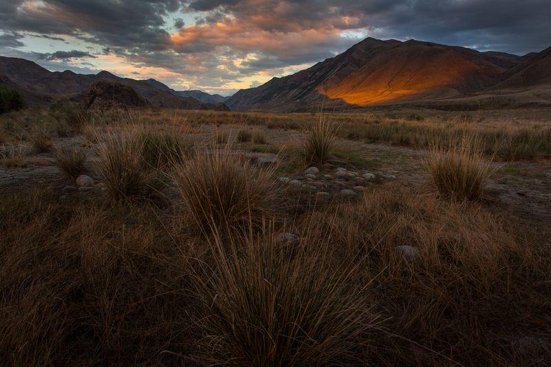 путешествия, тува, туризм, исследование, пейзаж, горы, река, хайкинг, ночь, сибирь, вечер, алаш, тыва В долине Алашphoto preview