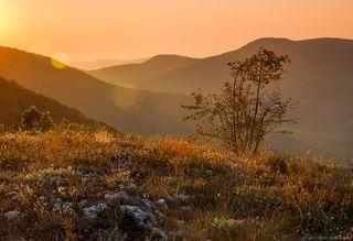 Золотистый вечер в крымских горах