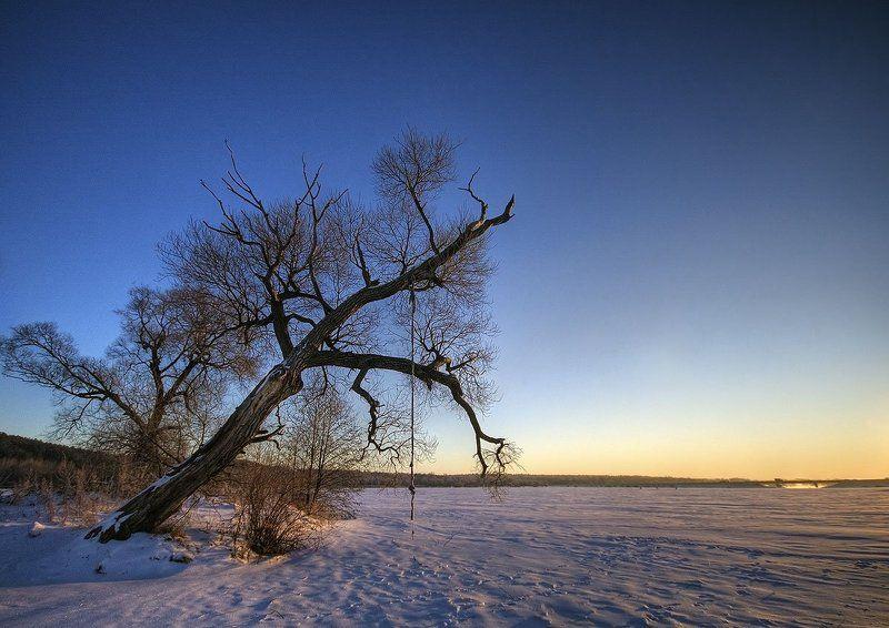 дерево, тарзанка, снег, зима, утро photo preview