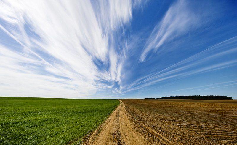 болака, небо, поле, дорога photo preview
