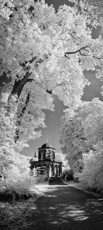 cecilienhof, infrared, neuer garten, potsdam, marmorpalais, gotische bibliothek, парк, дворец, потсдам, геримания photo preview