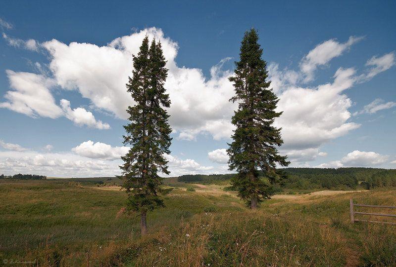 природа, пейзаж, лето Просто встретились два одиночества...photo preview