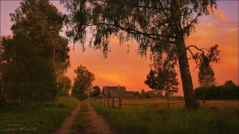 пейзаж, деревенская жизнь, лето, вечер, вечер в деревнеphoto preview