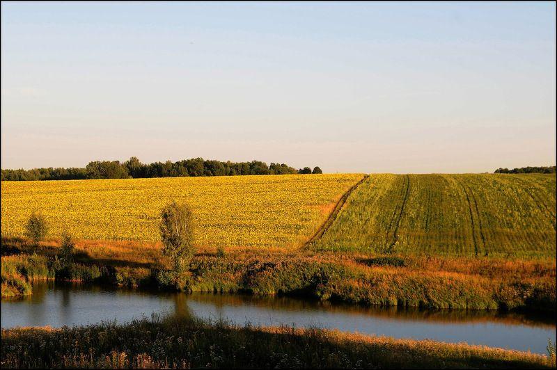 природа поля озера Природа поволжьяphoto preview