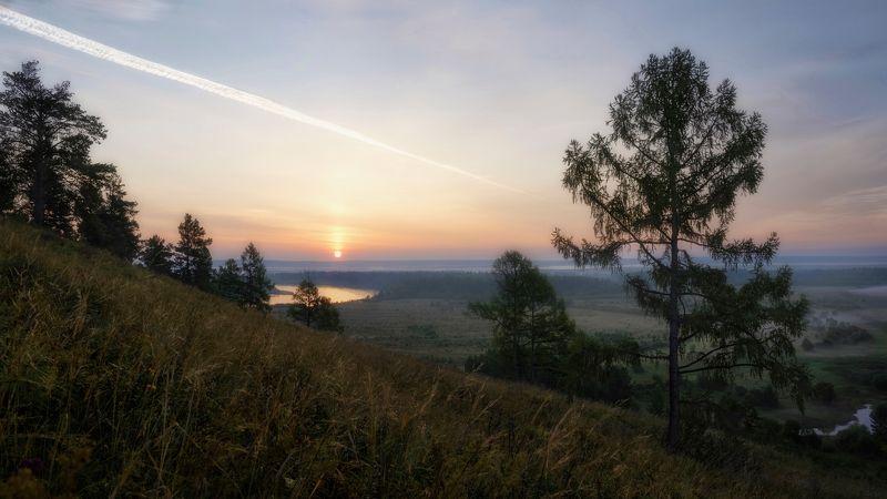 Сибирское утро,рассвет, туман, берег реки,лиственница,восходящее солнце,Siberian morning, dawn, fog, river bank, larch, rising sun *****photo preview
