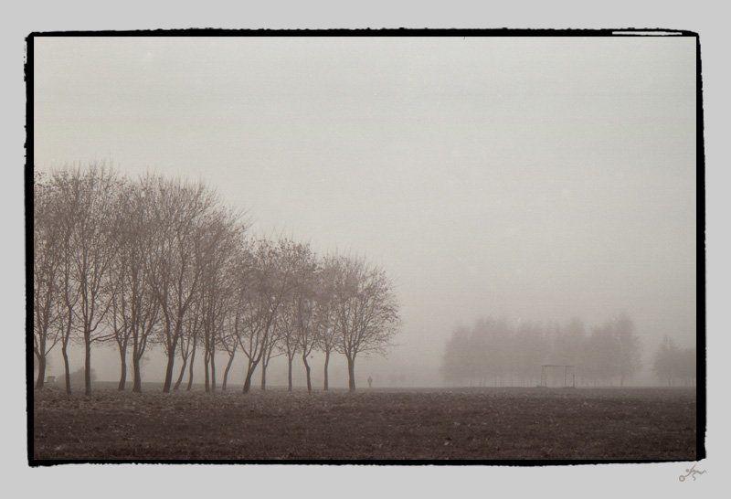 ч/б, пленка, пленка, ilford, туман, ноябрь, москва, ассоциации to be in a fog: dreamphoto preview