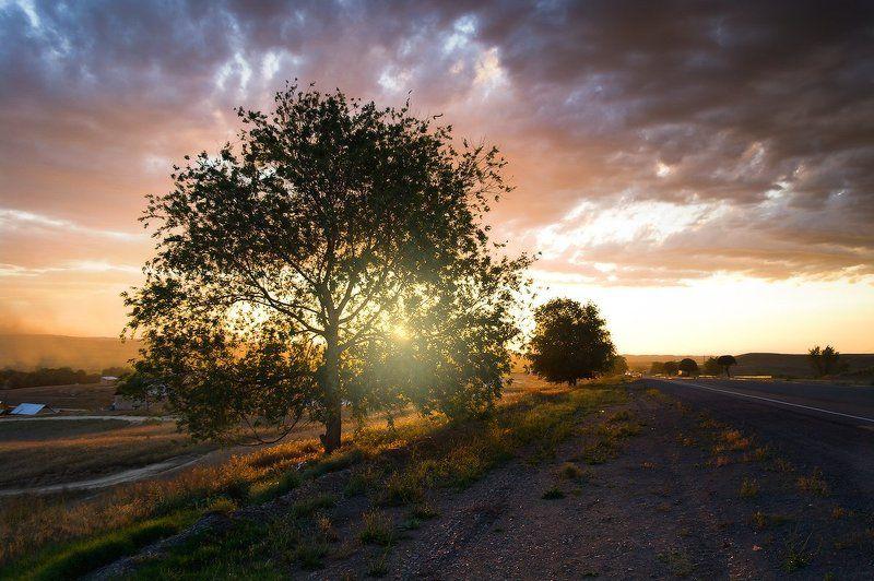 фотопутешествие, казахстан, природа photo preview