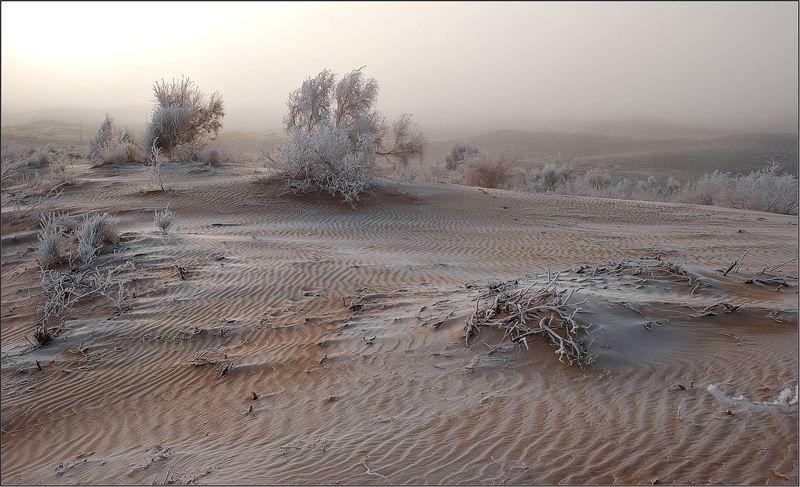природа, пески, казахстан photo preview