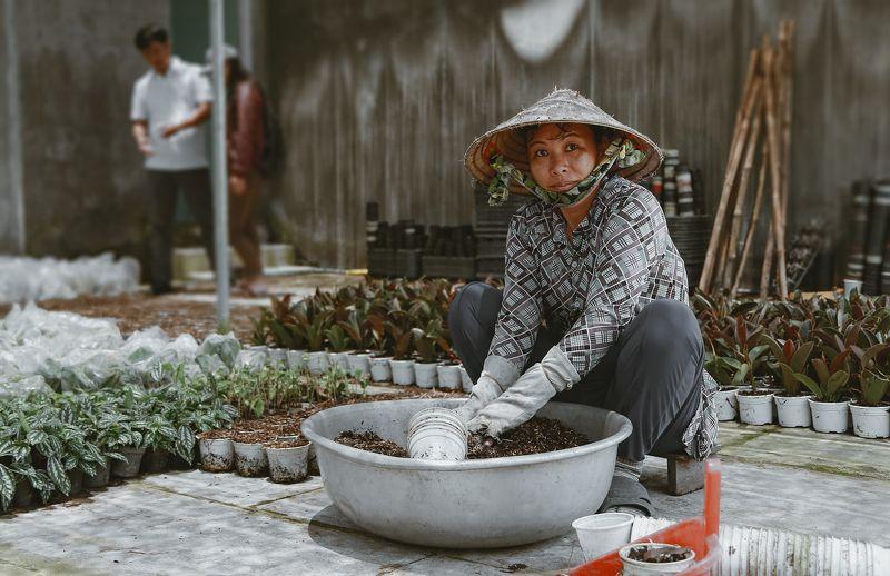 gardener, Vietnamese, portrait, canon, 6d gardenerphoto preview