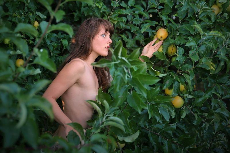 apple, tree, nude Der Apfeldiebphoto preview
