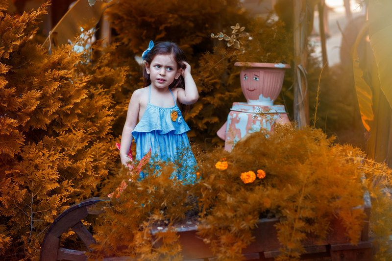 гордиенкоольга Снова осень? photo preview