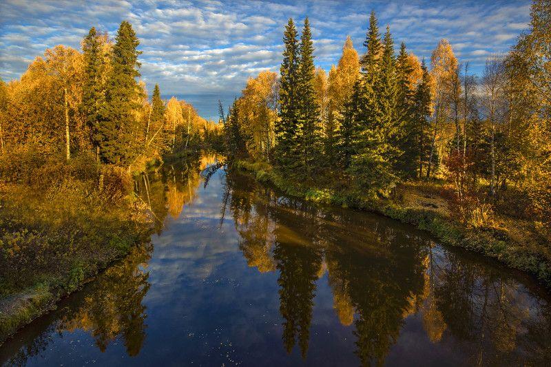 югра, река, тайга, сибирь, река эсс Осенняя Эссphoto preview