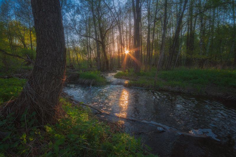 В весеннем потокеphoto preview
