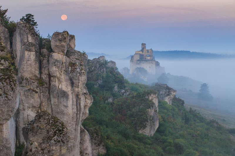 mirów,landscape,zamek,castle,polska,poland,the fog,mgła,fog,krajobraz,ruiny,  The mystical landscape of Mirówphoto preview