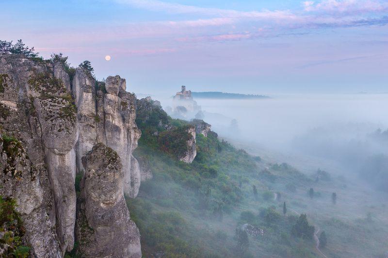 mirów,mirow,śląsk,slask,polska,poland,mgła,the fog,fog,moon,księżyc,jura,rocks, Mistyczna mgłaphoto preview