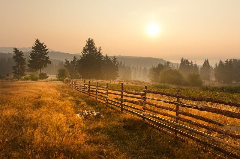 morning, fogs ,mountains, krusev, bulgaria, forest, rodopi Morningphoto preview