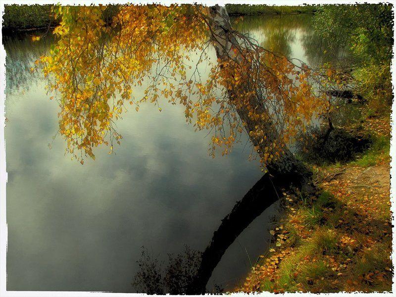 осень, природа, пейзаж Мягкая осень...photo preview
