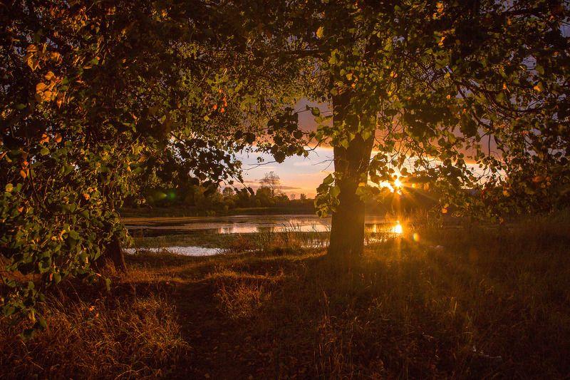 Россия, закат, Лежнево, Иваново, Ивановская область, пейзаж, природа, пруд На закатеphoto preview