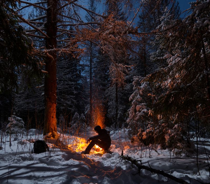 ночь лес зима костер россия луна  В ожидании 12 месяцевphoto preview
