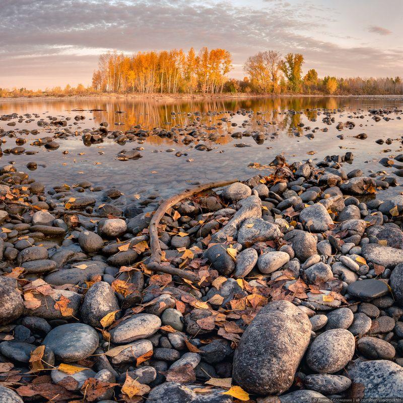 #landscape #light #yellow #autumn #altai #russia #siberia #river #nikon #nikond750 #katun #moon #gold #night #moonlight #пейзаж #свет #желтый #осень #алтай #россия #река #никон #riverside #берегреки Осень на Нижней Катуниphoto preview