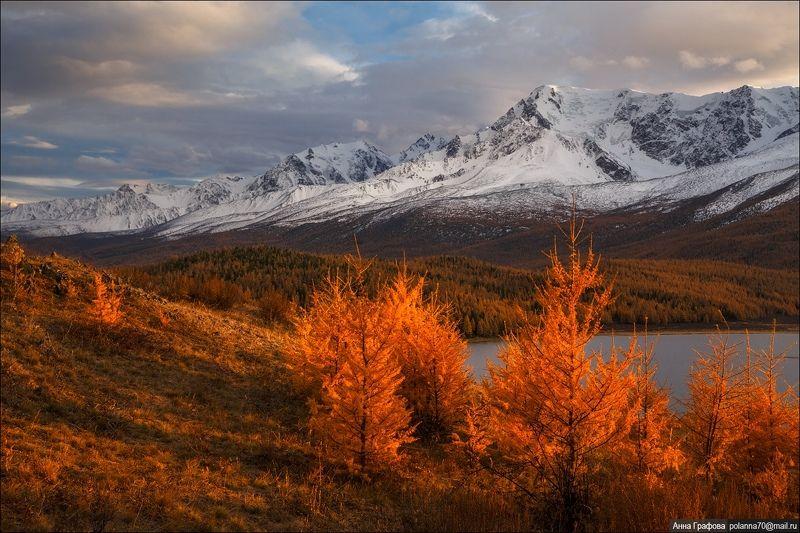 алтай,  горы, горный, алтай, северо-чуйский, хребет,  закат,  #красиваяосень2018 Тепло осеннего закатаphoto preview