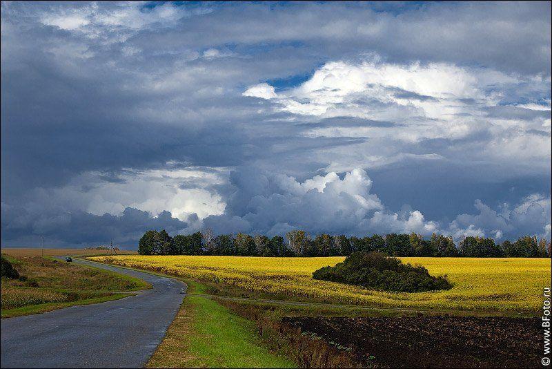 осень, пейзаж, фото, высокого, разрешения Осений пейзажphoto preview