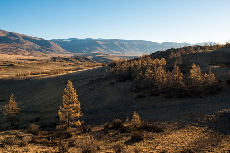 Алтай, осень, горы, курай В окрестностях Кураяphoto preview
