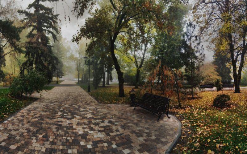 ставрополь, утро, осень, сквер По дороге на работуphoto preview