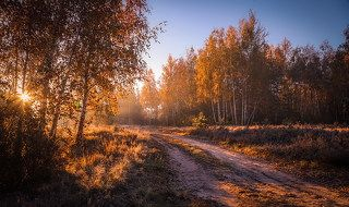 Разгуливает осень