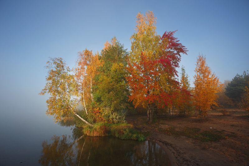 утро, осень, рассвет, дрозды, краски осени, минск, беларусь Все краски осениphoto preview