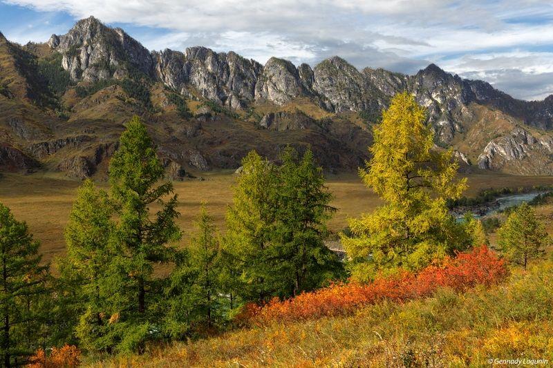 алтай, altai, осень, autumn, горы, mountains, Крадется осень по Алтаю....photo preview