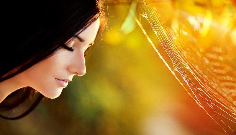 закат, желтый, контровой, девушка, паутина, портрет *******photo preview