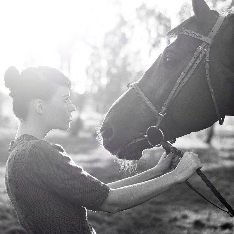 лошадь, девушка, девушка и лошадь, ч/б, портрет photo preview