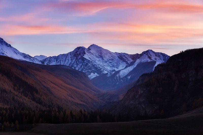 горы, природа, пейзаж, осень, небо, лес, закат, алтай, свобода, mountains, portrait, nature, autumn, sunset Вслед уходящему днюphoto preview