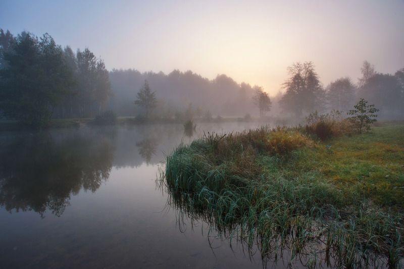 утро, осень, туман, рассвет, тишина, минск, беларусь Пробуждениеphoto preview