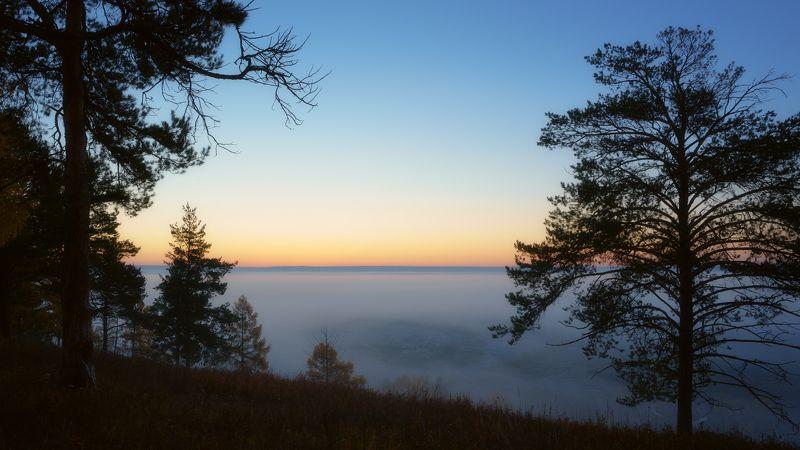 рассвет,туман,сосны,раннее утро,dawn, fog, pine, early morning. Очарование рассветом...photo preview