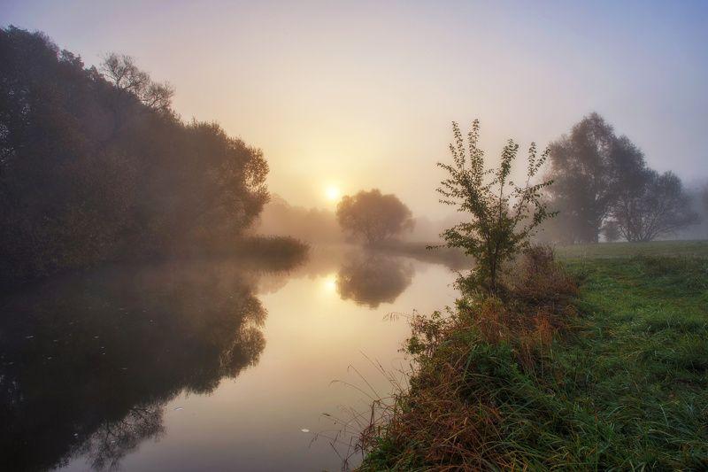 утро, осень, туман, рассвет, свислочь, минск, беларусь Свислочь ранним утромphoto preview