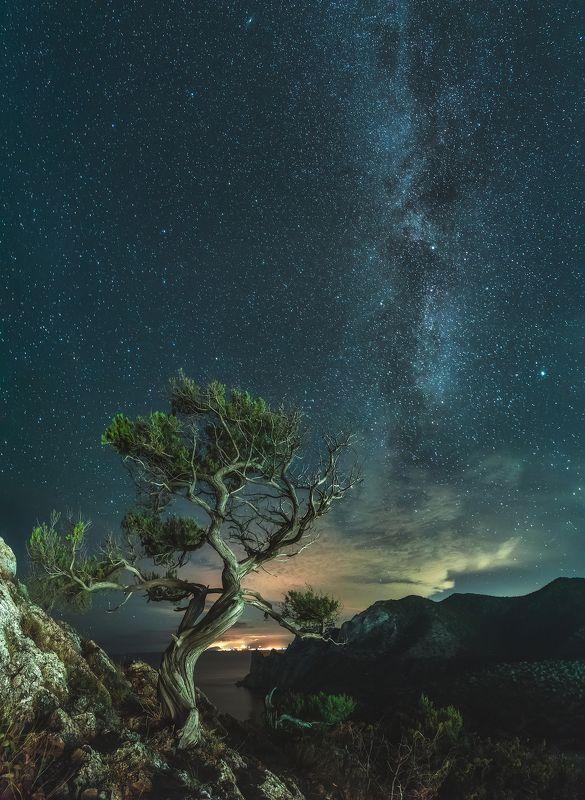 крым, новый свет, ночное фото, ночь, море, черное море, астрофотография, crimea, novyi svit, night photo, night, sea, black sea, astrophotography на краю в бесконечностьphoto preview