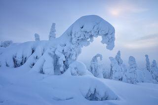 Зимняя зима :)